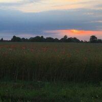Sonnenuntergang in Litauen