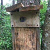 Vogelhaus ohne Einflugloch