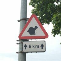 Wilde Tiere in Estland
