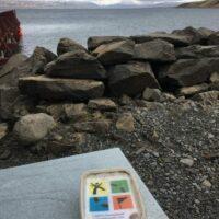 Blick vom Cache in Hjalteyri