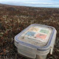 Geocache auf Moos (Stilleben, Island, 2018)