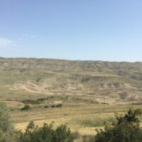 Dawit Garedscha: Mehr Landschaft